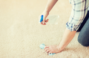 remove wood stain from carpet