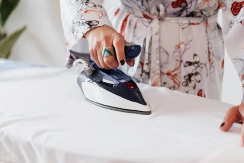 steam iron to kill bed bugs